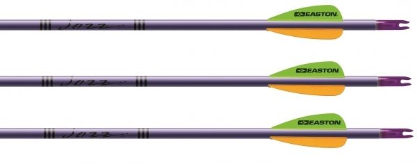 Competition Arrows